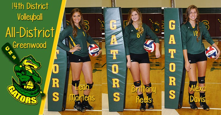 All-District Volleyball