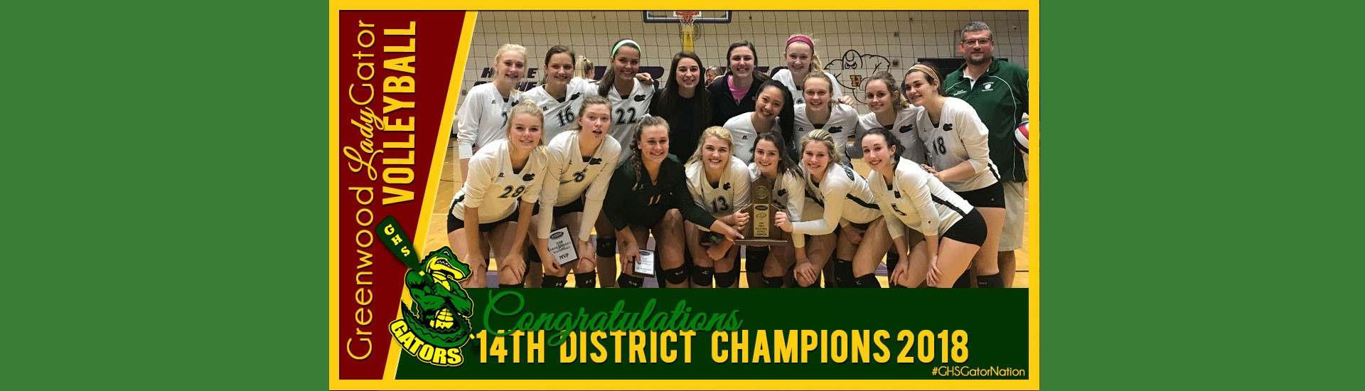 District Volleyball Champions