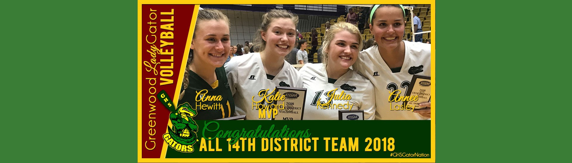 Volleyball Add-District