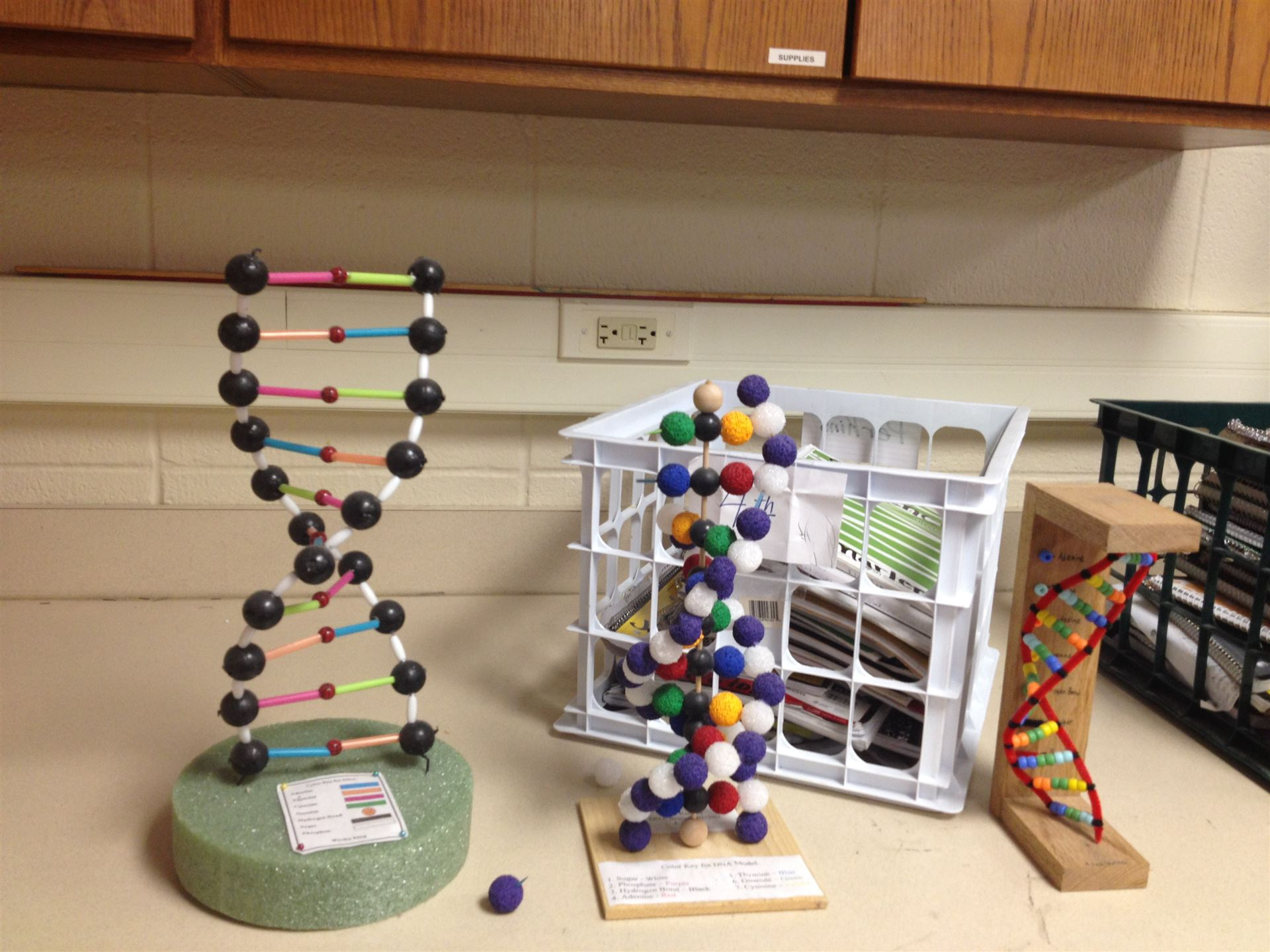 dna models projects I created this video with the youtube video editor ( .